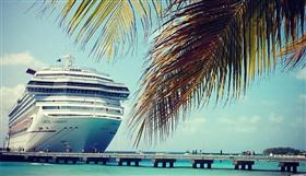 Carnival Conquest framed by palm trees.