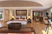 Amazonia suite