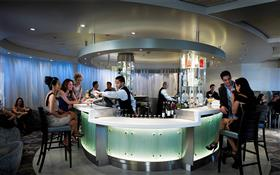 Passengers drinking cocktails at the Martini Ice Bar   Celebrity Century on  IgluCruise.