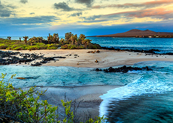 New Itineraries in the Galapagos