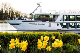 Amadeus Diamond