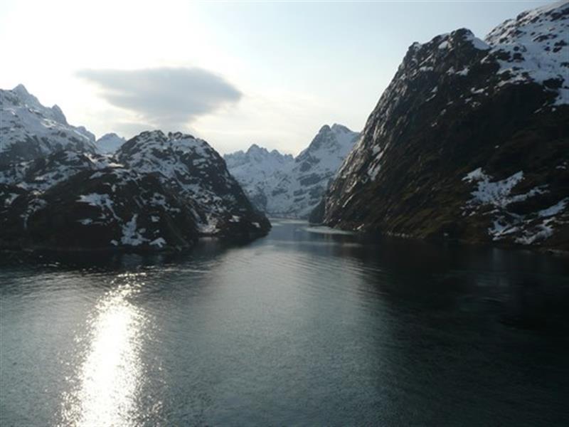 MS Trollfjord