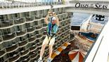 Royal Caribbean Oasis of the Seas images